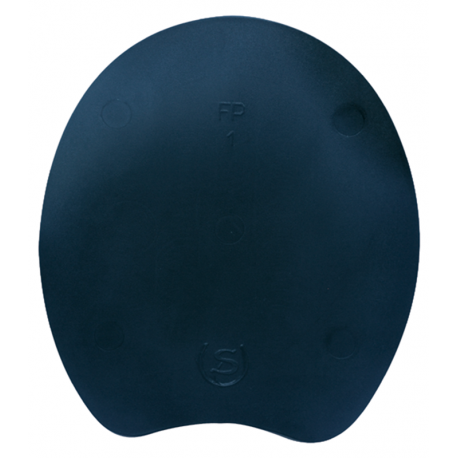 Plaque Noire Plate Double S FP ..........