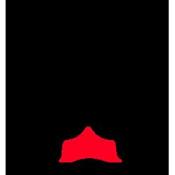 Module Ortho 4 Fer à Planche ( 3 tailles ) S-M-L